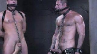 Queer Romp Gimp 0560